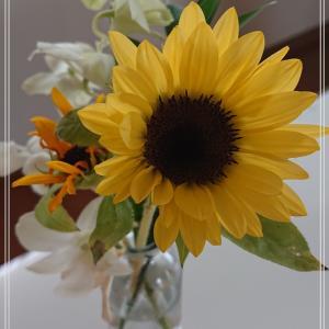 【bloomeeのお花】4回目のお花は夏らしいお花でした*