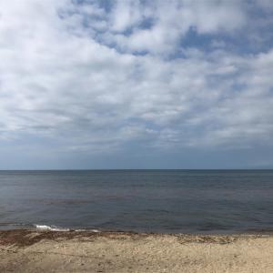 海に面している田舎の風景