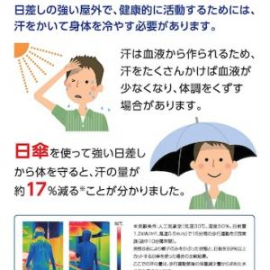 恥ずかしくない!男性でも日傘をさそう