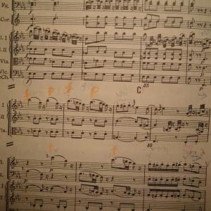 世代交代の雄ネルソンス指揮ゲバントハウス管のモーツアルト40番