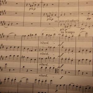 カルテットを通して見えた指揮者ヤフグ・フルシャベートーベン弦楽四重奏曲14番