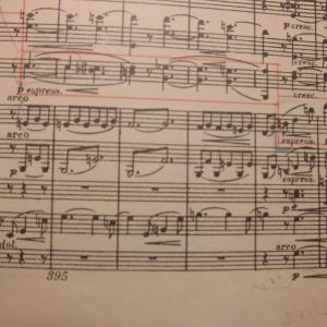 ブラームス交響曲1番ケント・ナガノ指揮オスロ・フィル