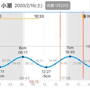 釣行記録3 福井県夕まずめメバリング
