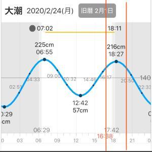 4:名古屋港 バチ抜けシーバス狙い