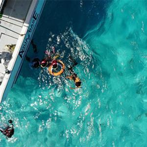 今日の宮古島の天気&八重干瀬の海況とツアー開催状況 2019年10月13日(日)