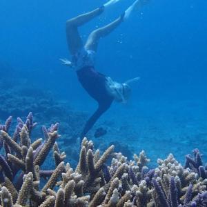 今日の宮古島の天気&八重干瀬の海況とツアー開催状況 2021年8月31日(火)