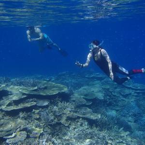 今日の宮古島の天気&八重干瀬の海況とツアー開催状況 2021年9月4日(土)