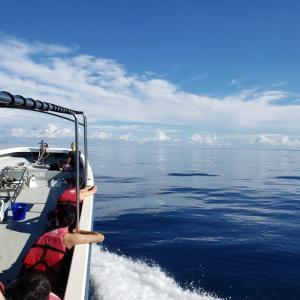 今日の宮古島の天気&八重干瀬の海況とツアー開催状況 2021年9月20日(月)