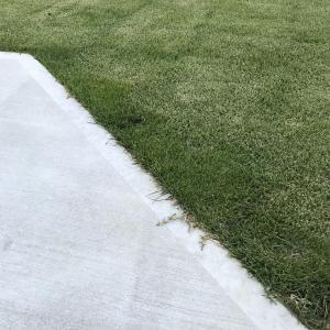 芝生のエッジカット