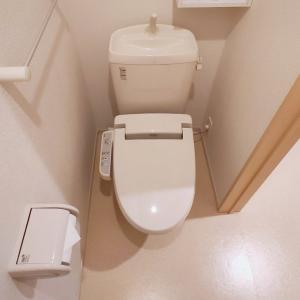 一人暮らし男子による日々のトイレ掃除の仕方【習慣】
