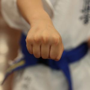 格闘技、子供が習い事にするなら何がおすすめ?合気道の魅力とは