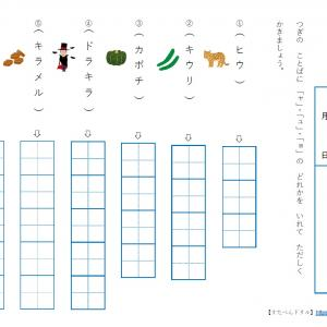 【カタカナ練習プリント】 小学生国語学習プリント