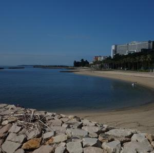 今シーズン最後の吉良ワイキキビーチ