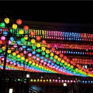 釈迦もビックリしてるかも?釜山の三光寺は提灯の数が桁違い♪絶対夜に訪問すべき!