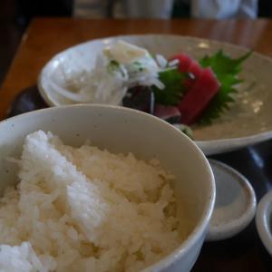 そうだ、三崎に鮪を食べに行こう!~三崎水産物地方卸売市場食堂