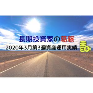 長期投資の葛藤【2020年3月第3週 資産運用実績】