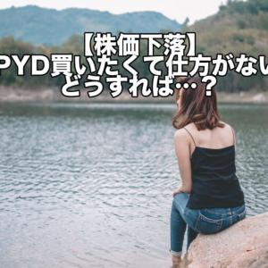 【株価下落】SPYD買いたくて仕方がない!どうすれば…?