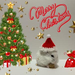 突撃とメリークリスマス