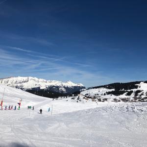 スキーに行ってきました。