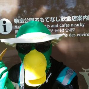 【ひきこもり一人旅】奈良の話