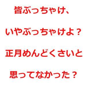 """【ひきこもりと正月】おい、もしかして今回は""""正月緊急シフト""""組まなくていいんじゃないか?(小声)"""