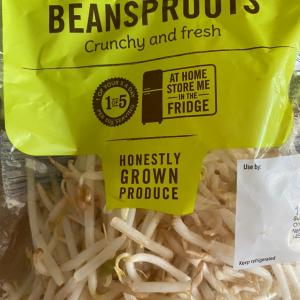 beansprouts もやし