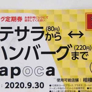 やっぱり来ちまった! NAPOCA期限最終日~