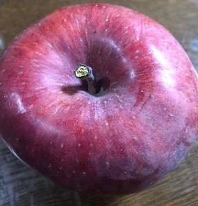 リンゴの不思議