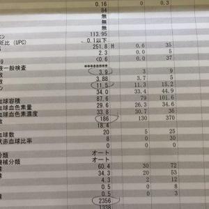 旅行後の抗がん剤治療入院4クール目【2018年8月1日~3日】