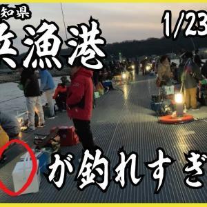 〜豊浜漁港〜◯◯が超大量に釣れた‼︎⁉︎釣り場紹介、釣果動画あり。 ☆料理番組付き☆