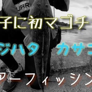 能登~富山でお手軽ルアーフィッシング😄