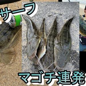 【7月】三重サーフでマゴチ連発!!