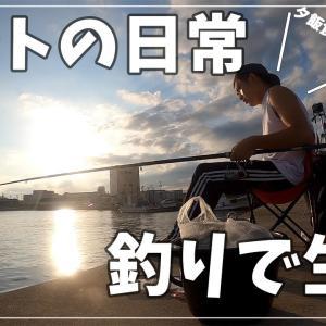【ルーティン】バンライフ系ニートのぼっちサビキ釣り