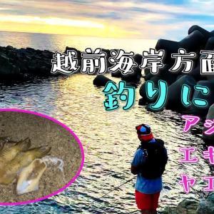 【越前海岸】に釣りに行く!