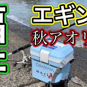 [エギング]秋アオリ調査に行って来た・福井