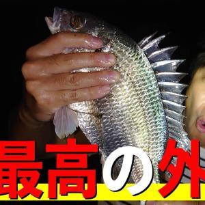 近所の川でウナギ釣りをしていたら、嬉しい外道が釣れた【#37 どうぶつ1000種 会えるかな】