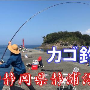 フルスイング 両軸遠投カゴ釣り @静岡県静浦港 2020/08/29