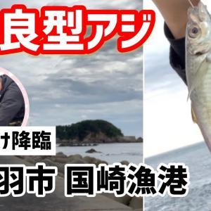 【銀釣り】鳥羽 国崎漁港で良型アジ!フカセ釣り! からの、神仕掛け登場。 三重県釣り 安定の神ゴム!