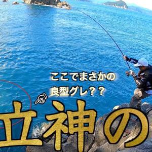 【三重県・尾鷲磯】秋磯到来・立神の地!!グレ釣りを楽しむ