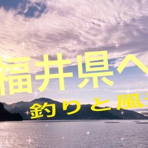 #福井県#海#風景 福井県に釣りリベンジ!!今日は釣れるのか?釣りと風景(//∇//)
