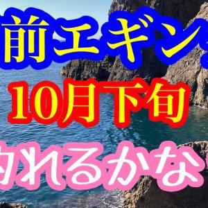 【エギング】激戦区でのエギング! 福井県、越前エギング