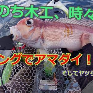 カヤックフィッシング(富山県氷見沖 ジギングでアマダイGET!)
