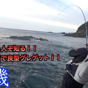 【三重県・錦磯】知る人ぞ知る穴場磯!!日本鼻!!しったかおやじ良型グレゲット!!