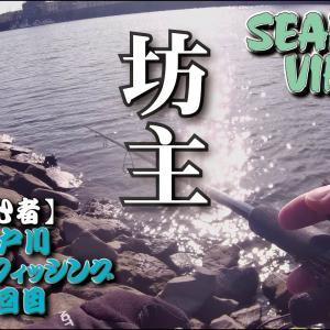 〈34回目シーバスフィッシング〉東京湾奥旧江戸川でデイゲーム・・・・坊主・・・・すいません・・・・