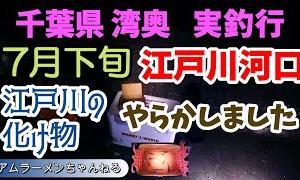 江戸川河口 夜釣り 7月下旬 謎の化け物に持ってかれました!