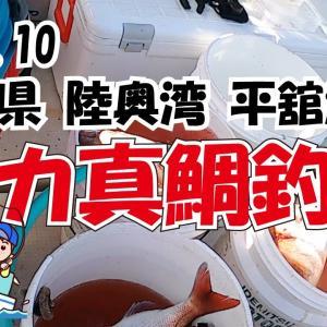 青森 陸奥湾 平舘漁港 真鯛釣りR3.9.10 第三