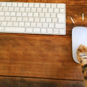 足で操作するマウスがすごい!ー機能や使う場面についてー