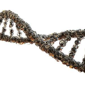 太りやすい原因は遺伝子!?3タイプ別の肥満の原因と注意点