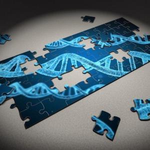 抗酸化力は遺伝子検査でわかる!?遺伝子タイプとは?