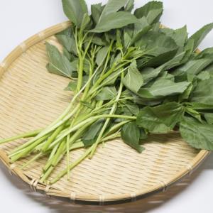 『モロヘイヤ』で夏バテ解消|栄養がたっぷりの野菜で免疫力もアップ!効果的な調理法も
